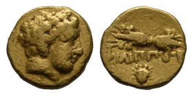 MACEDON, Kings of. Philip II. 359-336 BC. AV 1/12 Stater (0.70 gm). Pella mint. Circa 345-328 BC. Laureate head of Apollo right / Thunderbolt; facing ...