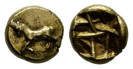IONIA, Uncertain Before 575 BC. EL, RARE!