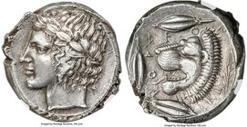 SICILY. Leontini. Ca. 450-420 BC. AR tetradrachm (24mm, 17.20 gm, 1h). NGC AU 4/5 - 4/5. Laureate head of Apollo left / LE-O-N-TI-N-ON, lion's head le...