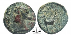 Kings of Cappadocia, Æ17, Ariarathes IV. Eusebeia