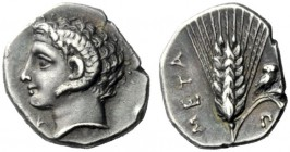 The J. FALM Collection: Miniature Masterpieces of Greek Coinage depicting Animals   Lucania, Metapontum  Diobol circa 325-275, AR 1.25 g. Head of Apo...