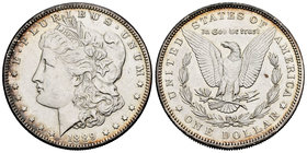 United States. 1 dollar. 1889. Philadelphia. (Km-110). Ag. 26,70 g. Cleaning hairlines. Almost XF. Est...25,00.