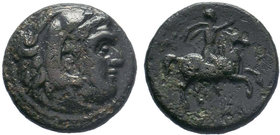 Kings of Macedon. Uncertain mint in Macedon. Philip III Arrhidaeus 323-317 BC. AE Bronze.Head of Herakles right, wearing lion skin / ΦΙ/ ΒΑ, horseman ...