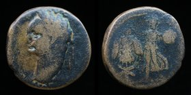 JUDAEA, Domitian (81-96), AE24. 9.74g, 24mm.