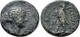 PTOLEMAIC KINGS OF EGYPT. Berenike II (Circa 244/3-221 BC). Ae Tritartemorion. Heraclea by the Sea or Seleucia in Pieria.