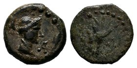 SELEUKID KINGDOM. Achaeus, 220-214 BC. AE of Sardes. Head of Apollo / Tripod. SC.958. Fine, brown patina. Scarce.  Condition: Very Fine  Weight:1.54gr...