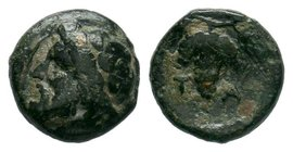 Aeolis. Temnos circa 200 BC. Bronze Æ  Condition: Very Fine  Weight: 1.26gr Diameter: 11.25mm  From a Private Dutch Collection.