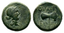 Lydia. Thyateira 200-100 BC.AE Bronze   Condition: Very Fine  Weight: 4.33 gr Diameter: 12.84 mm