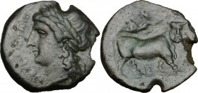 Greek Italy. Central and Southern Campania, Neapolis. AE 19mm, 275-250 BC. D/ Head of Apollo left, laureate. R/ Man-headed bull advancing right; above...
