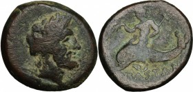 Greek Italy. Northern Lucania, Paestum. AE 20 mm, first Punic War, 264-241. D/ Laureate head of Neptune right. R/ Dolphin rider left. Cf. HN Italy 118...