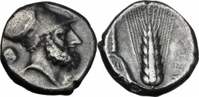 Greek Italy. Southern Lucania, Metapontum. AR Stater, c. 340-330 BC. D/ Bearded head of Leukippos right, wearing Corinthian helmet; behind, lion's hea...