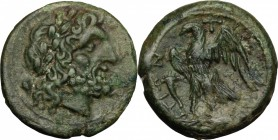 Greek Italy. Bruttium, The Brettii. AE Unit, 214-211 BC. D/ Head of Zeus right, laureate. R/ Eagle standing left on thunderbolt, wings open; before, c...
