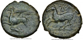 SICILY. Alaesa? Ca. 370-340 BC. AE (22mm, 7.64 gm, 5h). NGC Choice VF 4/5 - 3/5. Griffin springing left; grasshopper left below / KAINON, horse pranci...
