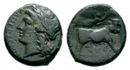 CAMPANIA. Compulteria. Circa 265-240 BC. AE  Condition: Very Fine  Weight: 5,32 gr Diameter: 19,70 mm