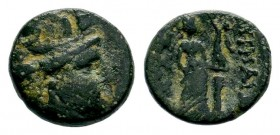 Greek Coins, 3rd century BC  Weight: 3,19 gr Diameter: 14,90 mm