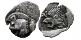 Mysia. Kyzikos AR Obol. 450-400 BC. Forepart of boar left, tunny behind./Head of lion left. SNG France 369-70; SNG Aulock 7331 0,16 gr. 8 mm